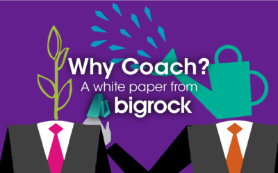 Why Coach? Exploring the Effectiveness of Coaching & Different Coaching Styles