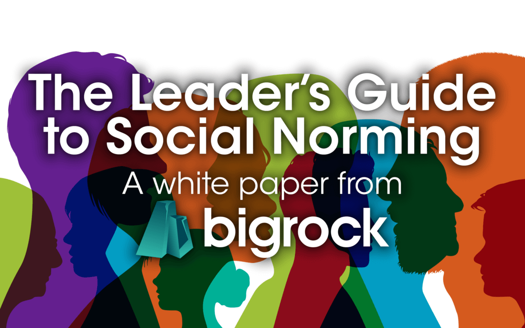 The Leader's Guide to Social Norming: Inspiring the right behaviours through positive social norms